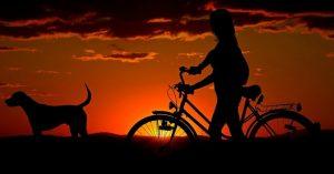 Bicicletta elettrica da città: le migliori bici pedalata assistita