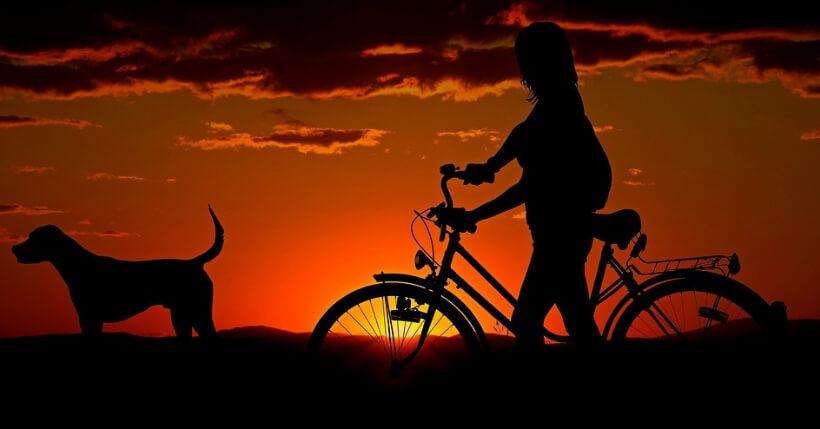 Bicicletta elettrica da città_ le migliori bici pedalata assistita